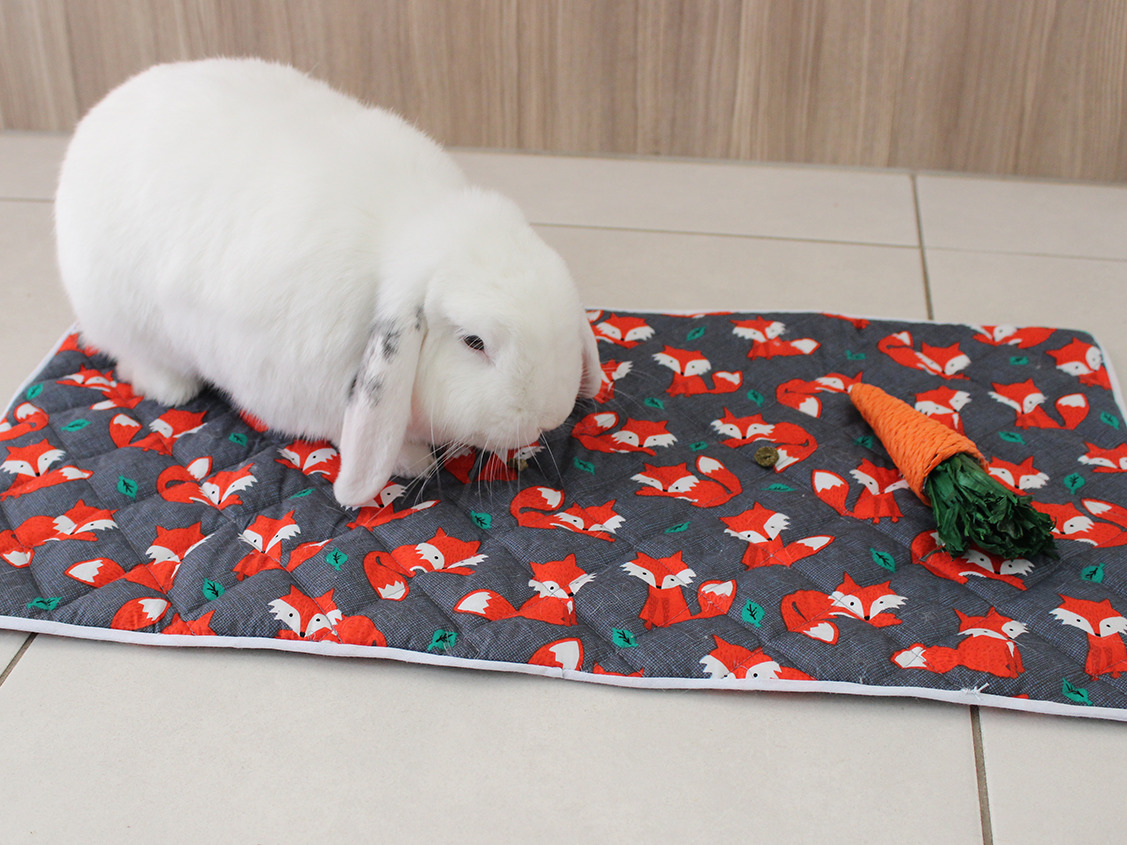 quilted pet blanket featured